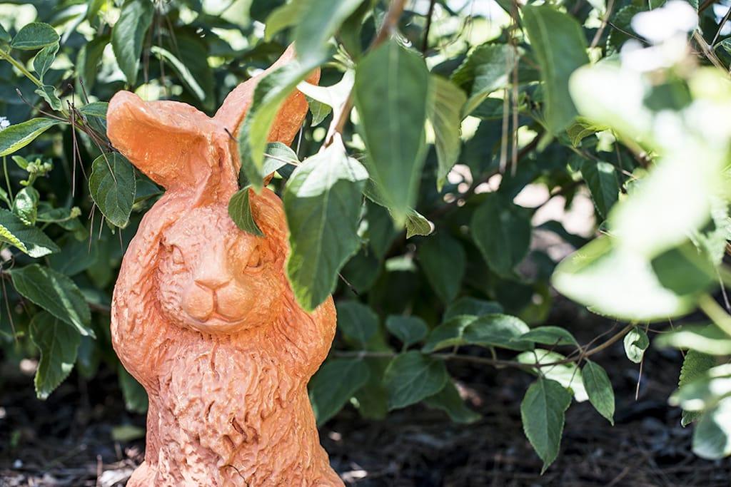 rabbit ceramic in garden