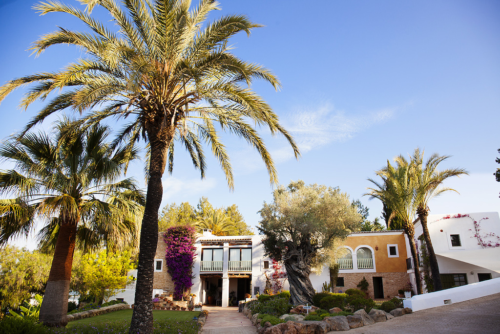 Palm trees and hotel exterior Cas Gasi Ibiza